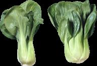 Salad PNG Free Download 12