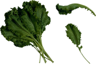 Salad PNG Free Download 13