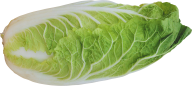 Salad PNG Free Download 15