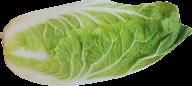 Salad PNG Free Download 15