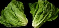 Salad PNG Free Download 18