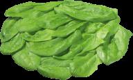 Salad PNG Free Download 5