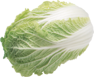 Salad PNG Free Download 7