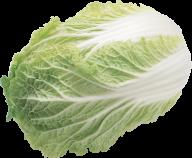 Salad PNG Free Download 7