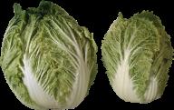 Salad PNG Free Download 8