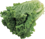 Salad PNG Free Download 9