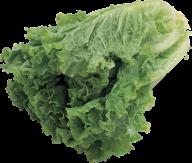 Salad PNG Free Download 9