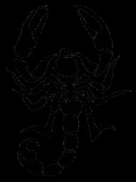 Scorpion PNG Free Download 25