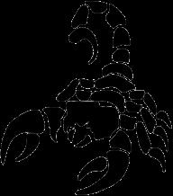 Scorpion PNG Free Download 27