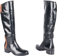 shiny boots png
