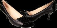 singel pair black heelshoe free png download