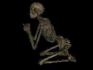 Skeleton PNG Free Download 11