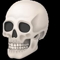 Skeleton PNG Free Download 14