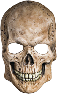 Skeleton PNG Free Download 16