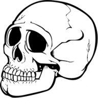 Skeleton PNG Free Download 26