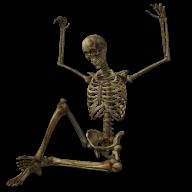 Skeleton PNG Free Download 5