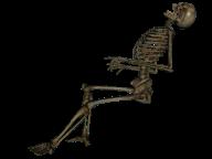 Skeleton PNG Free Download 9