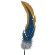 Snake like Feather Png Image