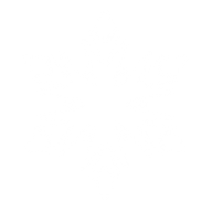 Snow Flakes PNG Free Download 11