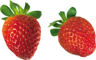 Strawberry PNG Free Download 19