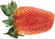 Strawberry PNG Free Download 21