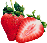 Strawberry PNG Free Download 28