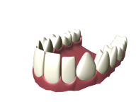 Teeth PNG Free Download 5