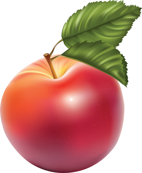 Apple drawn using photoshop png