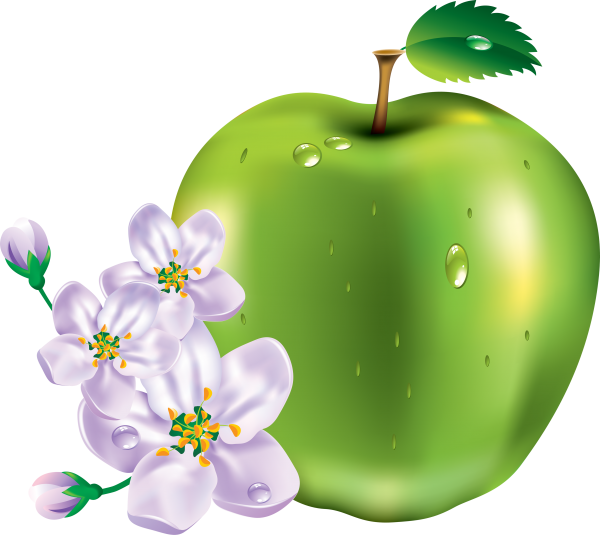 Apple icon with  Apple Flower Png