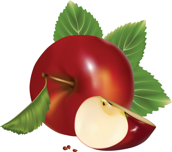 Apple icon with seeds