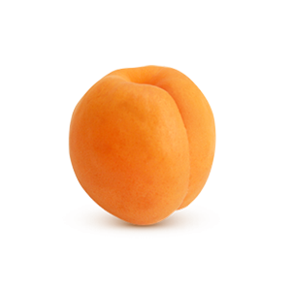 Apricot Icon Png
