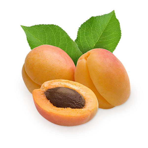 Apricot Png Icon Clipart