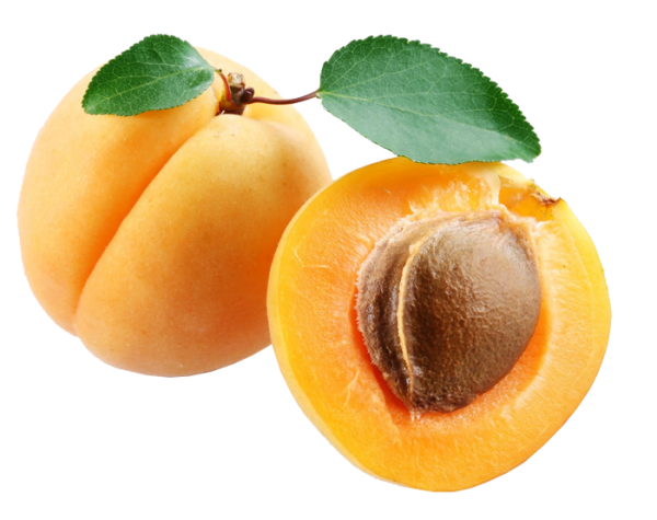 Apricot Png with Seed