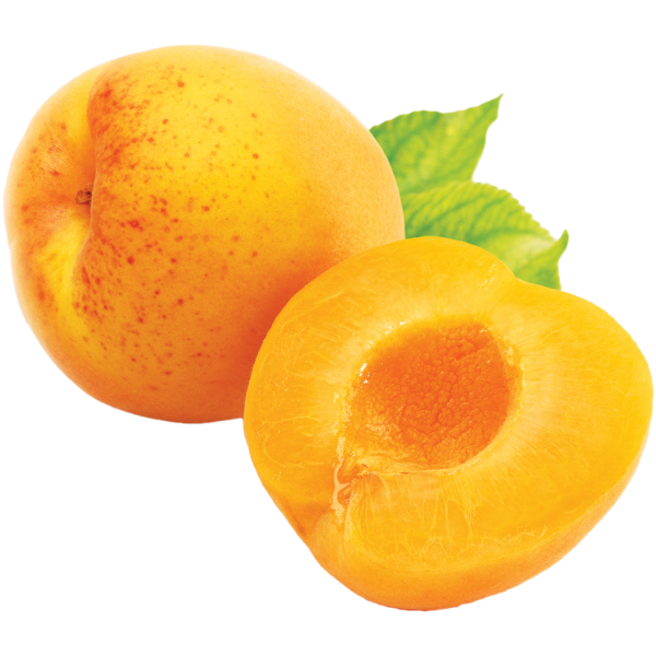 Apricot Png Without Seed