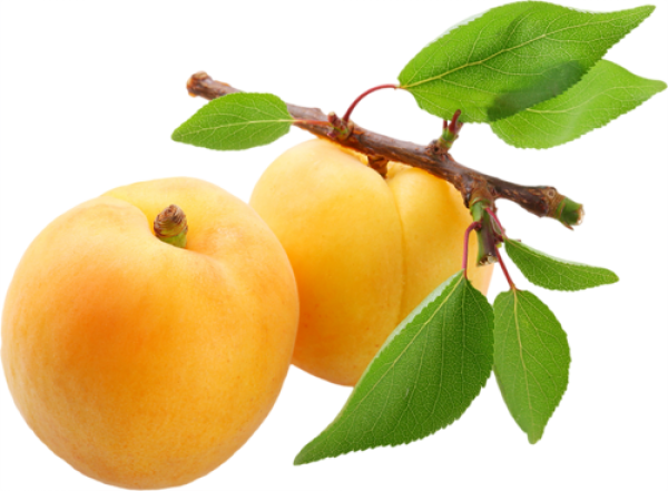 Apricot with Leaves Png