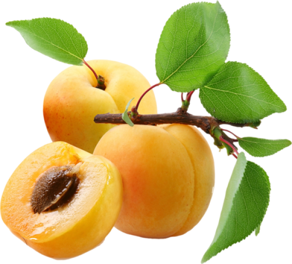 Apricot with seeds and Leaves Png