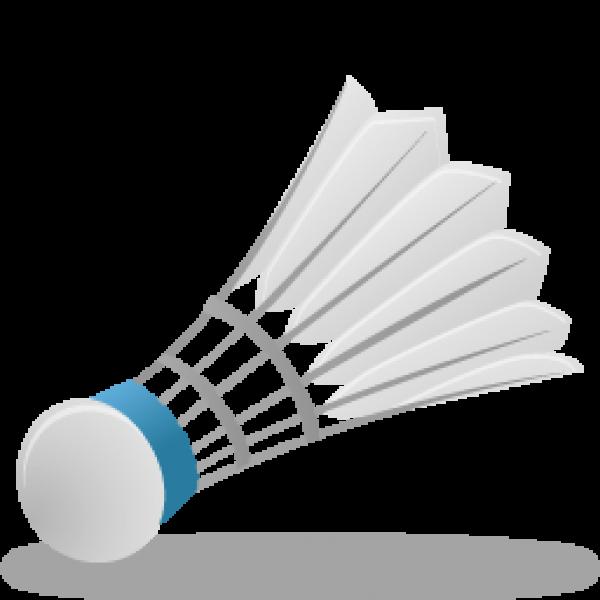 badminton ball PNG