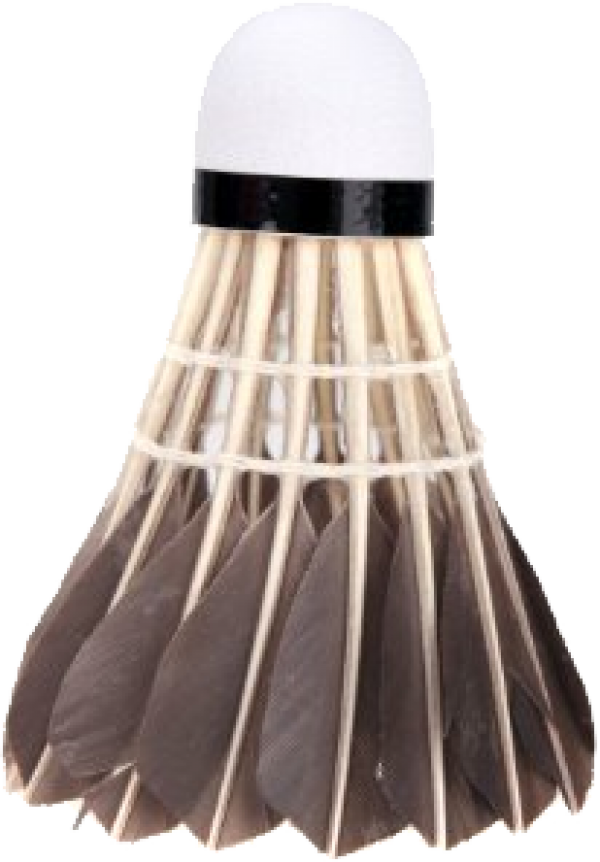 badminton chicken hair PNG
