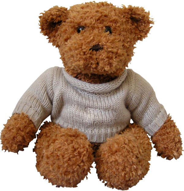 Bear Png Doll with Dress