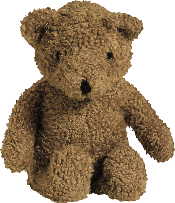 Brown Teddy Bear Png