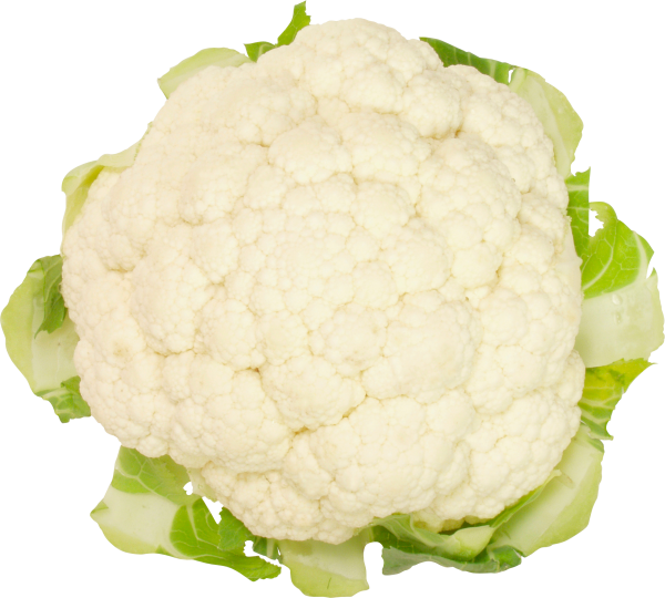cauliflower PNG free Image Download 4