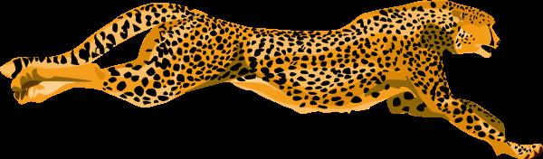 Cheetah Clipart Png