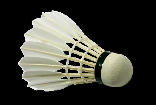 download badminton image