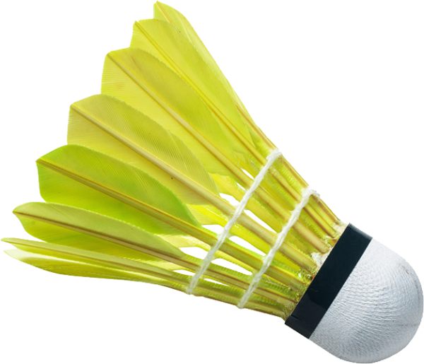 download badminton PNG