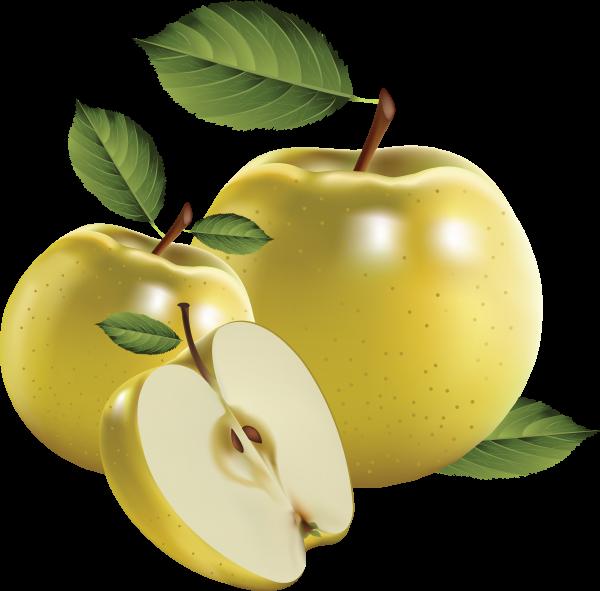 Drawn Apples Png