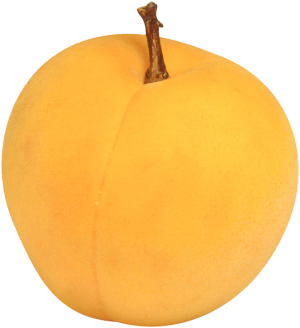 Drawn Apricot Png Clipart