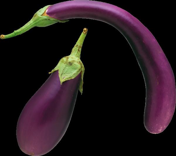 Eggplant Brinjal Png Free Download