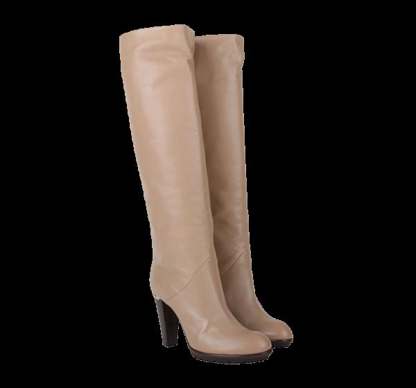 fashion ladies boots free png