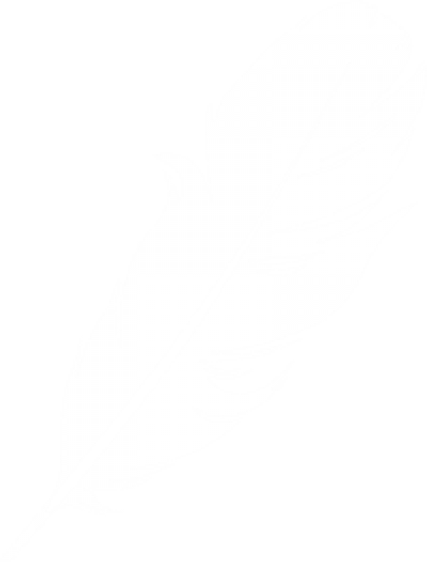 Feather Clipart Logo Image Download Png Images Download Feather Clipart Logo Image Download Pictures Download Feather Clipart Logo Image Download Png Vector Stock Images Free Png Download