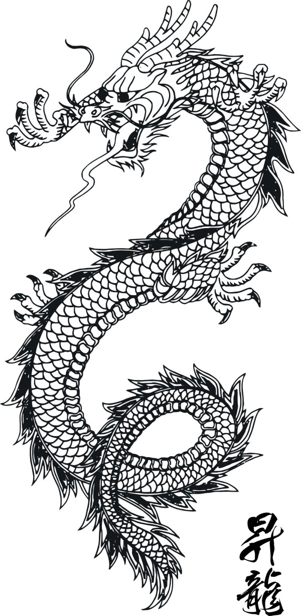 free dragon tattoo download png